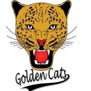 Golden Cats